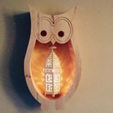 Owl Shelf profile photo-2